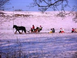 sneeuw arrenslee slee winter paard pixabay