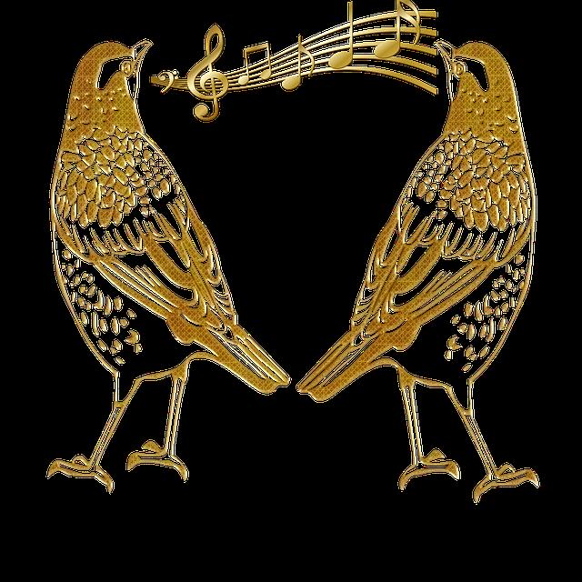 vogel zingen