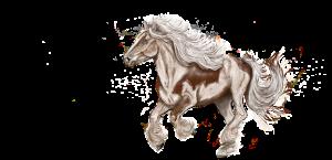 paard draf gallop tekening