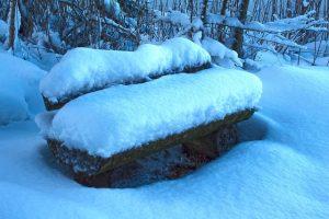 winter bank sneeuw