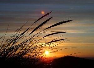 zonsondergang duin