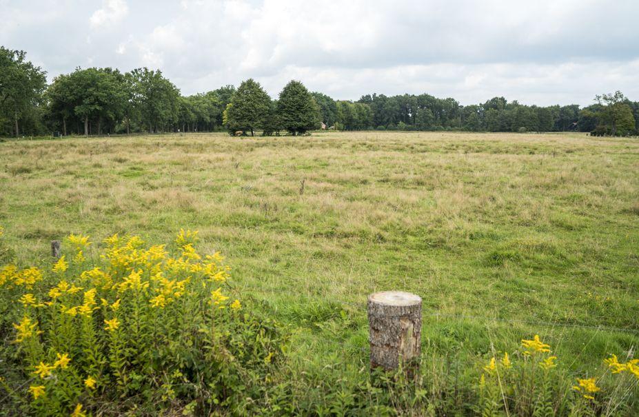 Nationaal Landschap Winterswijk natuur achterhoek