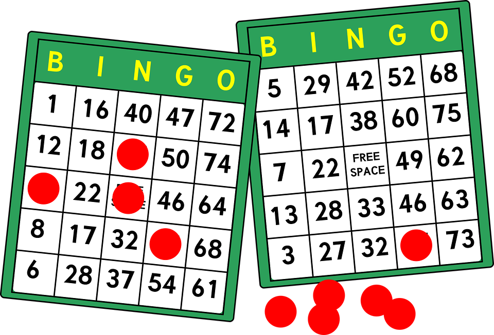 bingo bingokaaar