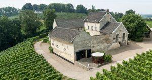 Apostelhoeve wijngaard