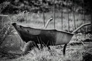 kruiwagen tuin